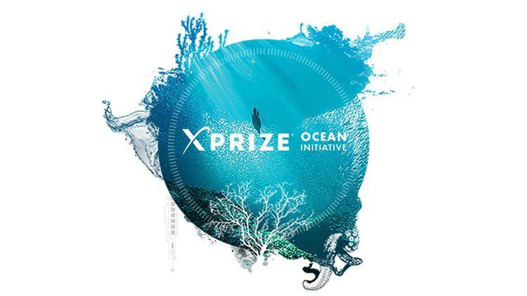 Big Ocean Button Challenge