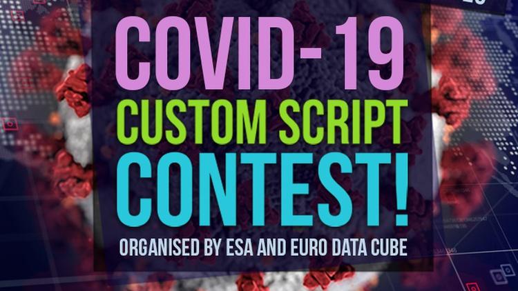 COVID-19 Custom Script Contest