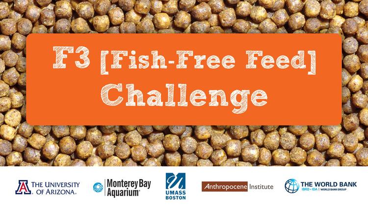 F3 Fish-Free Feed Challenge